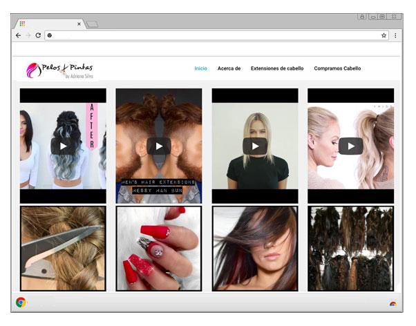 pelos y pintas web